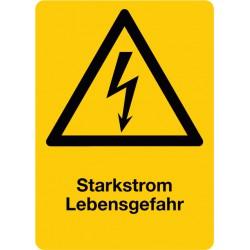 Starkstrom Lebensgefahr, kombiniert mit Symbol Warnung vor elektrischer Spannung (W012)