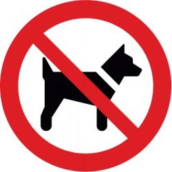 Mitführen von Hunden verboten (P021)