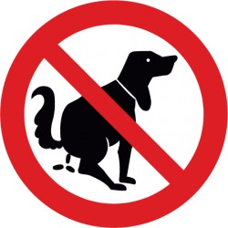 Kein Hundeklo
