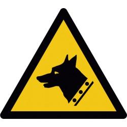 Warnung vor Wachhund (W013)
