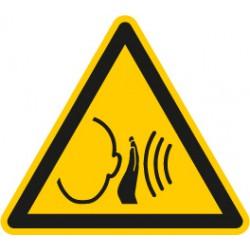 Warnung vor unvermittelt auftretendem lauten Geräusch (W038)