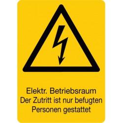 Elektr. Betriebsraum Der Zutritt ist nur befugten Personen gestattet, kombiniert mit Symbol (W012)